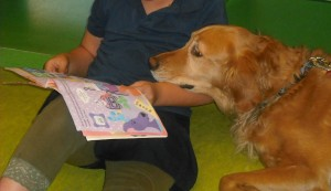 Dog_with_book_5516202508