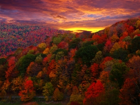 country-road-autumn-mountain-sunset